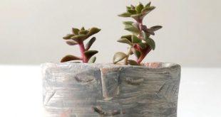 DIY Clay Succulent Planter