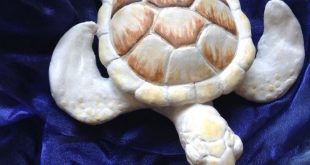 Ghost Turtle. One of my favorite pieces I sculpted in college — an albino Gre...