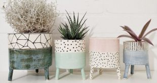 Cute planter idea for indoor plants