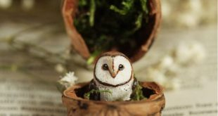 Miniature owl in a walnut shell by Woods of Wonder