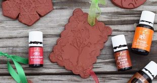 Use Air-Dry Clay Christmas cookie cutters and acrylic stamps to make the simpl ...